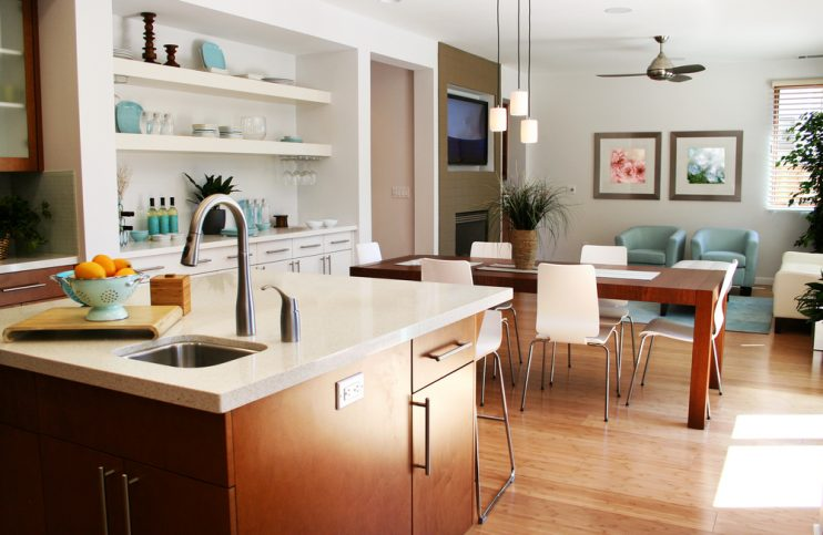 Hygienic Home